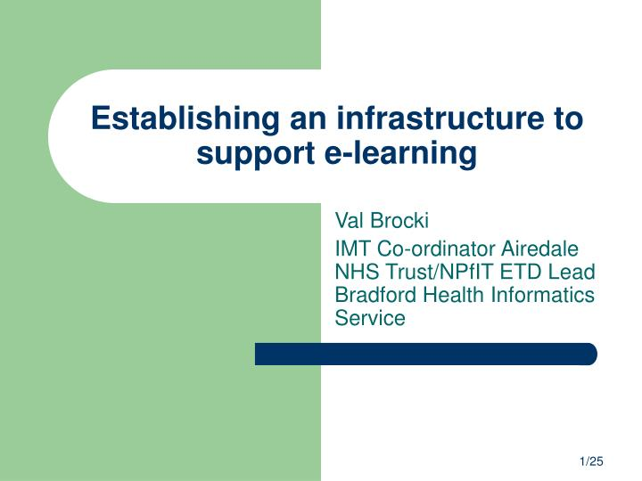 establishing an infrastructure to support e learning n.