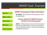 smart goal example1