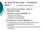 so what do we mean functional skills the adult core curriculum