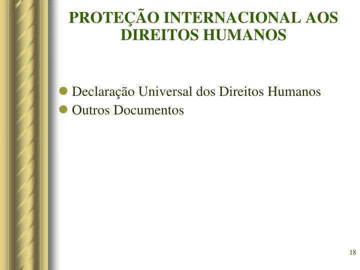 PROTEÇÃO INTERNACIONAL AOS DIREITOS HUMANOS