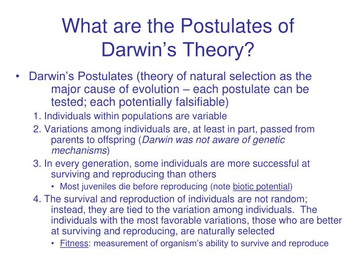 darwin s theory of natural selection fear of heights It is a nice try, but it does not convince me thomas malthus and the galapagos finches provide a much more plausible origin for the theory of evolution by natural selection darwin was, after all, a man of his time, class and society.