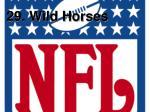 29 wild horses