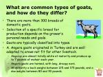 what are common types of goats and how do they differ