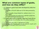 what are common types of goats and how do they differ5