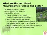 what are the nutritional requirements of sheep and goats1