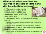 what production practices are involved in the care of lambs and kids from birth to weaning1