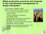 what production practices are involved in the reproductive management of sheep and goats2