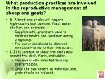 what production practices are involved in the reproductive management of sheep and goats4
