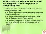 what production practices are involved in the reproductive management of sheep and goats5