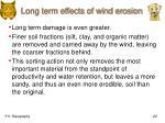 long term effects of wind erosion