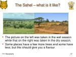 the sahel what is it like
