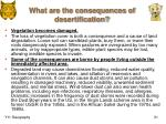 what are the consequences of desertification1