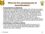 what are the consequences of desertification2