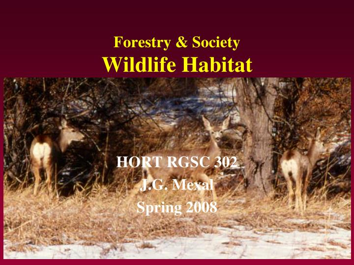 forestry society wildlife habitat n.