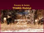 forestry society wildlife habitat