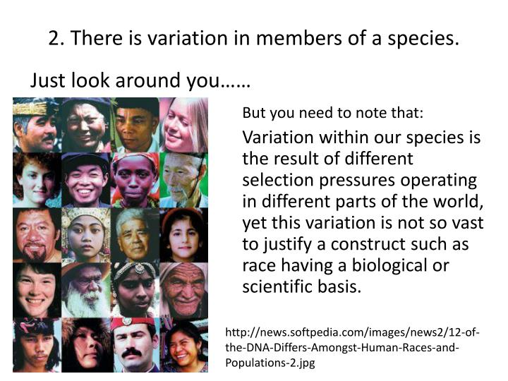 2. There is variation in members of a species.