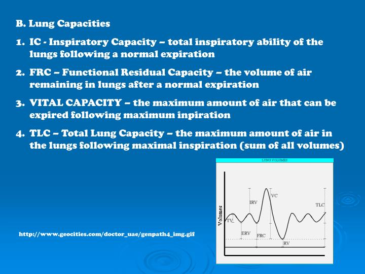 B. Lung Capacities