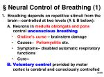 neural control of breathing 1