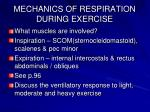 mechanics of respiration during exercise