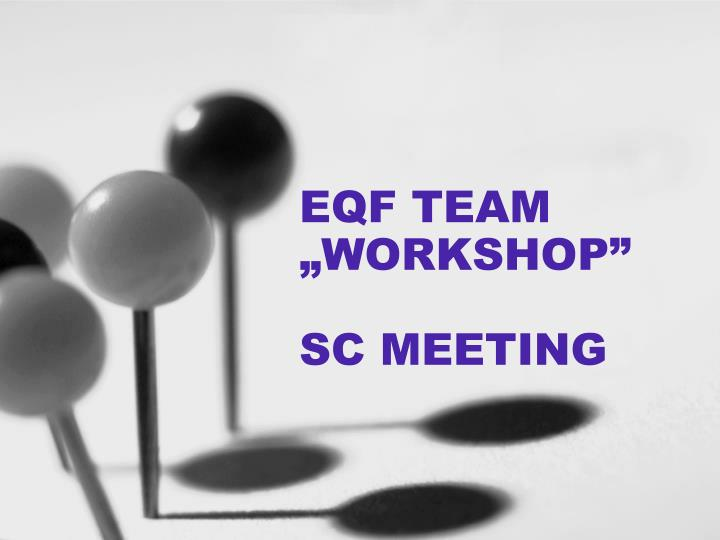 eqf team workshop sc meeting n.