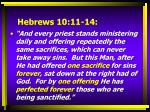 hebrews 10 11 14