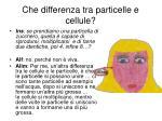 che differenza tra particelle e cellule