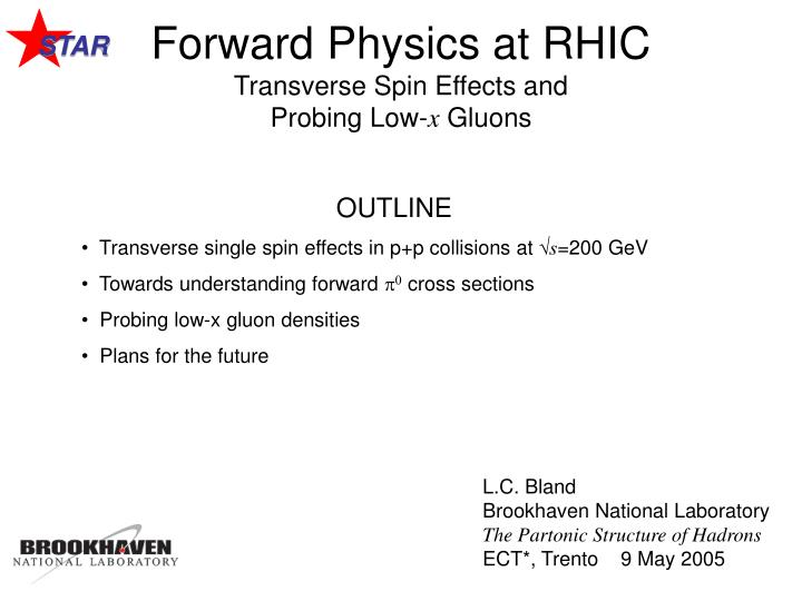 forward physics at rhic transverse spin effects and probing low x gluons n.