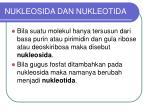 nukleosida dan nukleotida