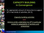 capacity building in convergence
