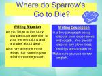 where do sparrow s go to die