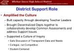 district support role