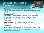 developmental needs of adolescents
