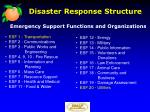 disaster response structure