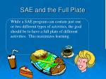 sae and the full plate8
