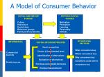 a model of consumer behavior