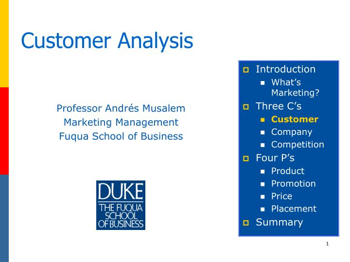 customer analysis n.