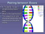 pairing between bases1