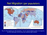 net migration per population