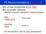p5 recommendations fermilab
