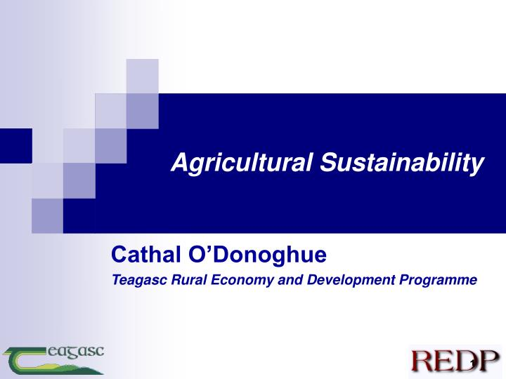 agricultural sustainability n.