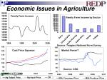 economic issues in agriculture