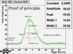 proof of principle