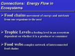 connections energy flow in ecosystems