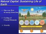 natural capital sustaining life of earth