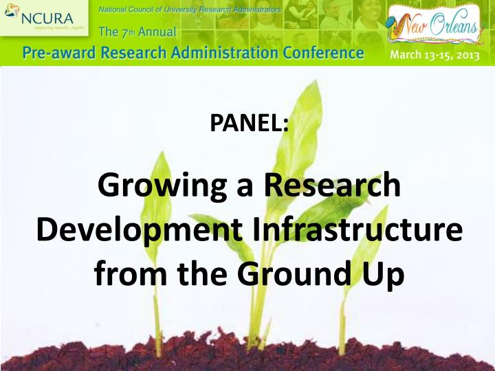 panel growing a research development infrastructure from the ground up n.