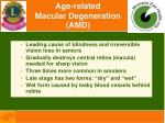 age related macular degeneration amd