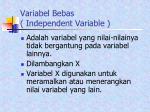 variabel bebas independent variable