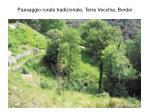 paesaggio rurale tradizionale terra vecchia bordei