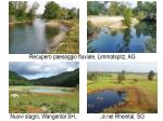 recupero paesaggio fluviale limmatspitz ag