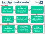 burn scar mapping service processing chain